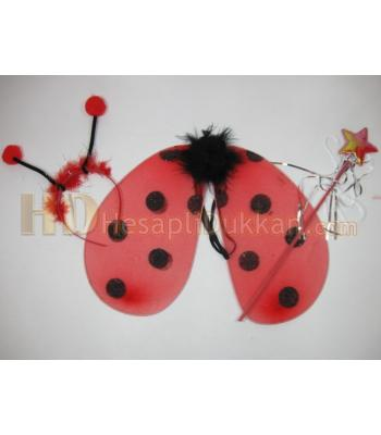 Uğur böceği kanat set toptan