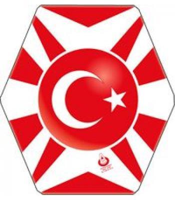Toptan fiyat Türk bayraklı uçurtma