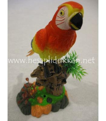 Konuşan öten ses kaydeden papağan P422