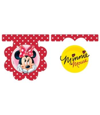MINNIE & DAISIES BAYRAK SET