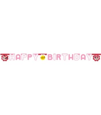 MINNIE & DAISIES HAPPY BIRTHDAY SET