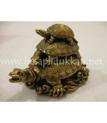Üç kaplumbağalar P568