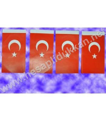 İpe dizili Türk bayrağı 10x20 B038