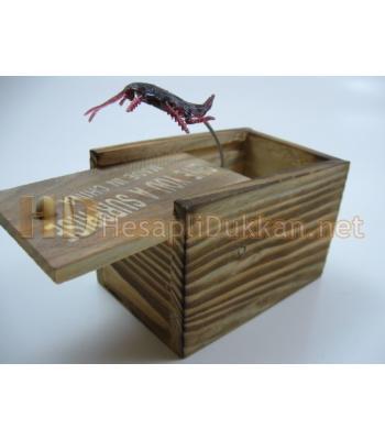 Sürprizli böcekli kutu şaka malzemesi R403